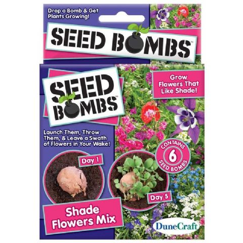 Seed Bombs - Grow Your Own Plants & Herbs Cactus DuneCraft (1 Supplied)
